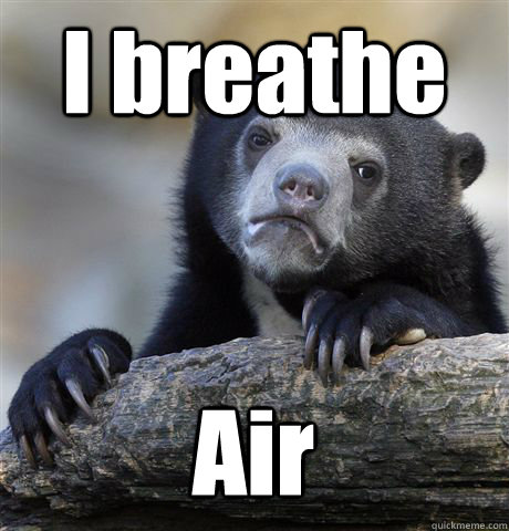 I breathe Air - I breathe Air  Confession Bear