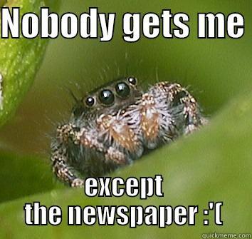 NOBODY GETS ME  EXCEPT THE NEWSPAPER :'( Misunderstood Spider