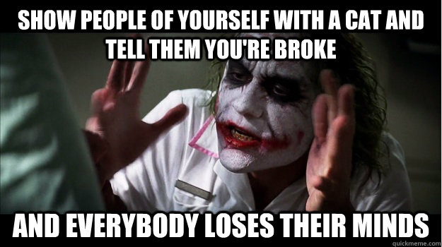 Show people of yourself with a cat and tell them you're broke AND EVERYBODY LOSES THEIR MINDS - Show people of yourself with a cat and tell them you're broke AND EVERYBODY LOSES THEIR MINDS  Joker Mind Loss