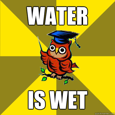 water is wet - water is wet  Observational Owl