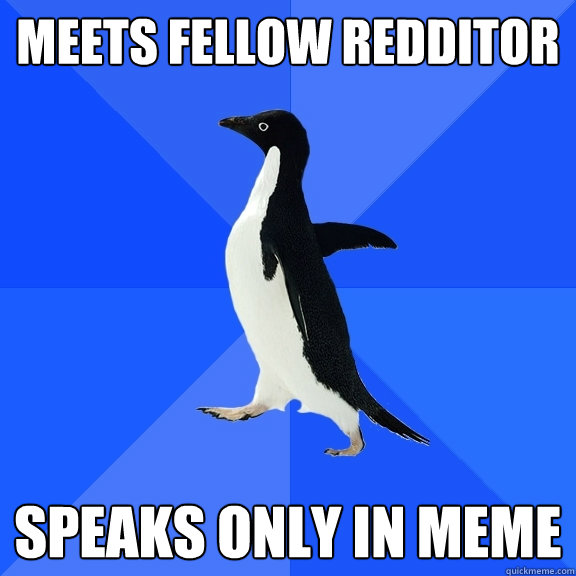 Meets Fellow Redditor Speaks only in Meme - Meets Fellow Redditor Speaks only in Meme  Socially Awkward Penguin