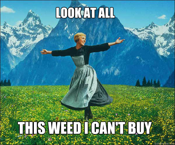 Look at all This weed i can't buy