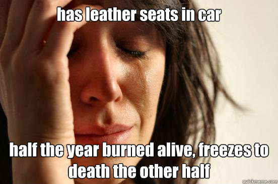 has leather seats in car half the year burned alive, freezes to death the other half - has leather seats in car half the year burned alive, freezes to death the other half  First World Problems