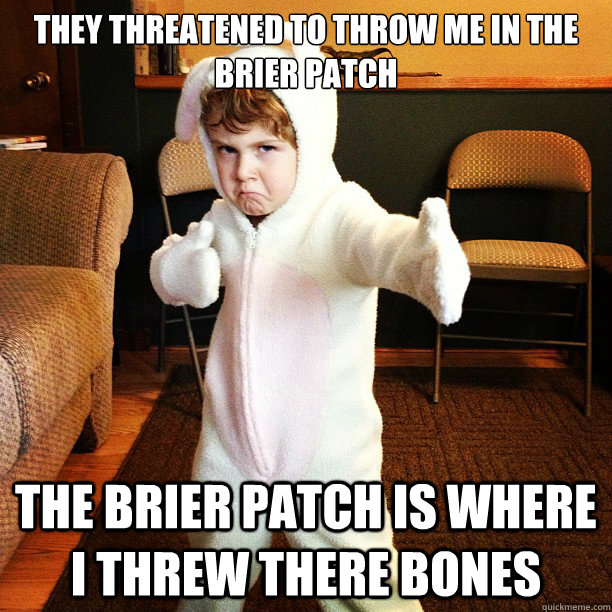 They threatened to throw me in the Brier Patch The Brier Patch is where I threw there Bones