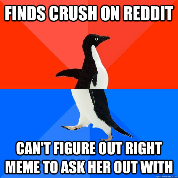 Finds crush on Reddit Can't figure out right meme to ask her out with - Finds crush on Reddit Can't figure out right meme to ask her out with  Socially Awesome Awkward Penguin