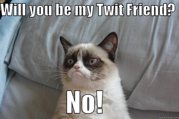 WILL YOU BE MY TWIT FRIEND?  NO!  Grumpy Cat