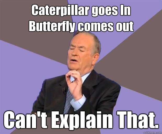 Caterpillar goes In Butterfly comes out Can't Explain That.  Bill O Reilly