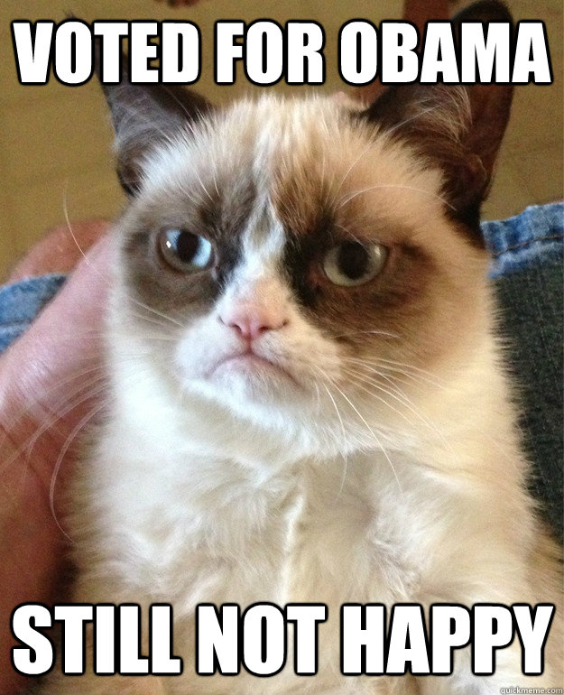 Voted For Obama Still not happy - Voted For Obama Still not happy  Grumpy Cat