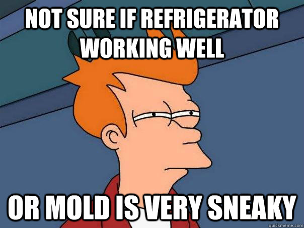 Not sure if refrigerator working well Or mold is very sneaky - Not sure if refrigerator working well Or mold is very sneaky  Futurama Fry