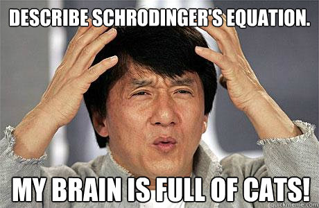 Describe Schrodinger's Equation. My Brain is Full of Cats! - Describe Schrodinger's Equation. My Brain is Full of Cats!  EPIC JACKIE CHAN