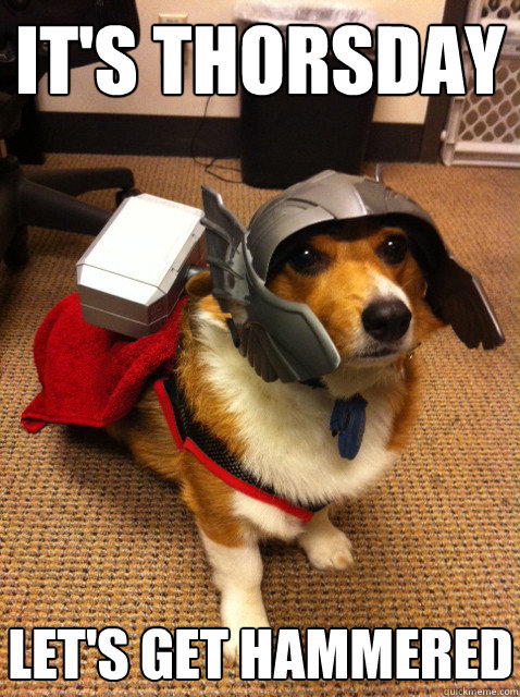 It's thorsday let's get hammered - It's thorsday let's get hammered  Thorgi Dog of Thunder