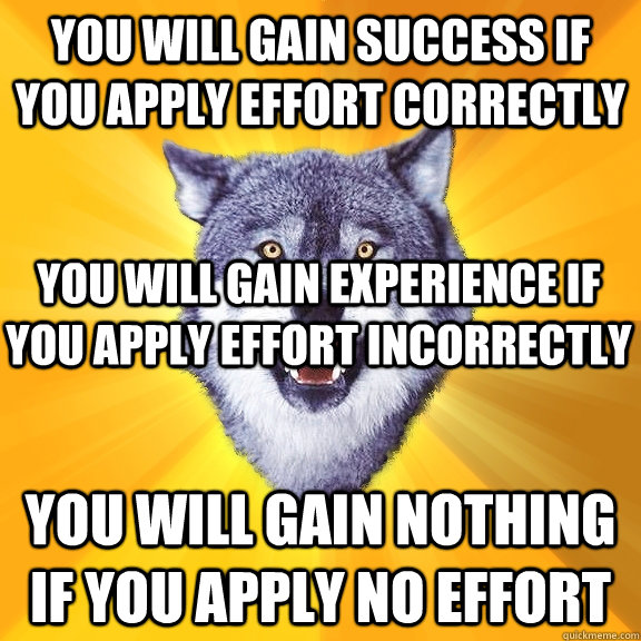 You will gain success if you apply effort correctly You will gain nothing if you apply no effort You will gain experience if you apply effort incorrectly  Courage Wolf