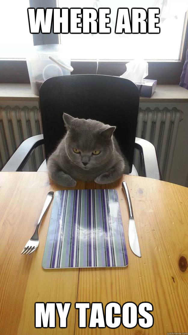 Where are my tacos  Hungry Cat
