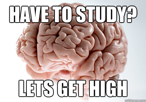 Have to study? Lets Get High - Have to study? Lets Get High  Scumbag Brain