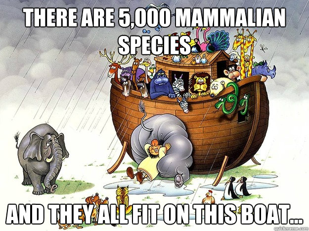 There are 5,000 mammalian species And they all fit on this boat...  Noahs Ark