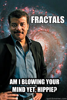 Fractals Am I blowing your mind yet, hippie? - Fractals Am I blowing your mind yet, hippie?  Neil deGrasse Tyson