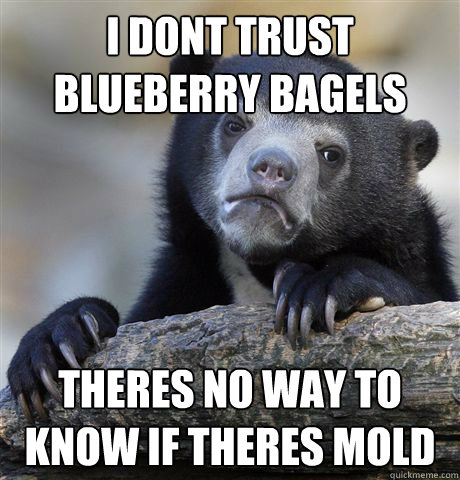 i Dont trust blueberry bagels theres no way to know if theres mold - i Dont trust blueberry bagels theres no way to know if theres mold  Confession Bear