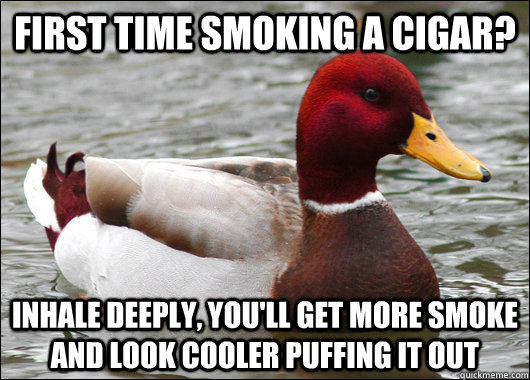 First time smoking a cigar? Inhale deeply, you'll get more smoke and look cooler puffing it out - First time smoking a cigar? Inhale deeply, you'll get more smoke and look cooler puffing it out  Malicious Advice Mallard