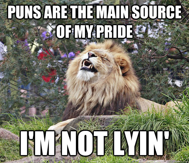 Puns are the main source of my pride I'm not lyin'