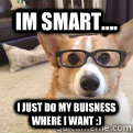 im smart.... i just do my buisness where i want :)  smart dog