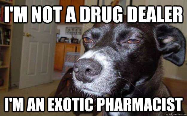 I'm not a drug dealer I'm an Exotic pharmacist  - I'm not a drug dealer I'm an Exotic pharmacist   Skeptical Mutt
