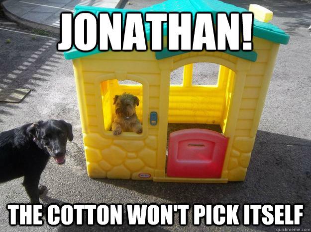 Jonathan! The Cotton Won't Pick Itself  Upper Class White Dog