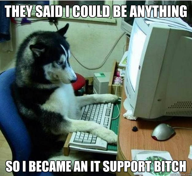 they said i could be anything so i became an it support bitch