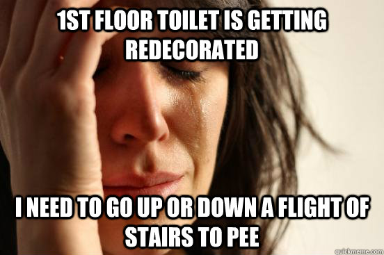 1st floor toilet is getting redecorated i need to go up or down a flight of stairs to pee - 1st floor toilet is getting redecorated i need to go up or down a flight of stairs to pee  First World Problems