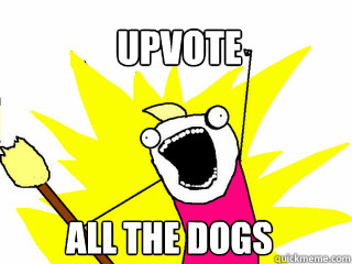 upvote all the dogs - upvote all the dogs  All The Things