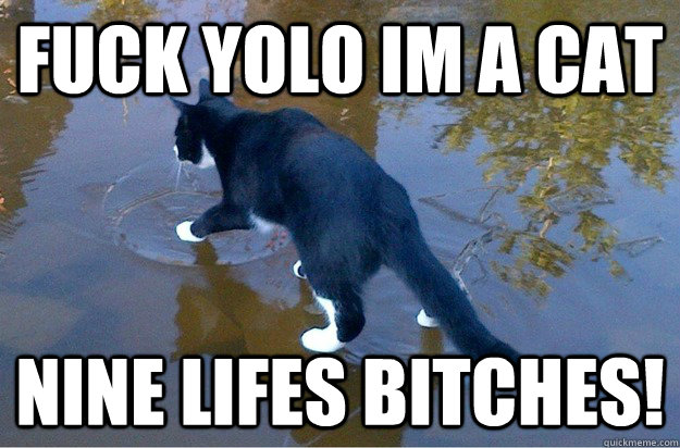 fuck yolo im a cat nine lifes bitches! - fuck yolo im a cat nine lifes bitches!  Jesus Cat
