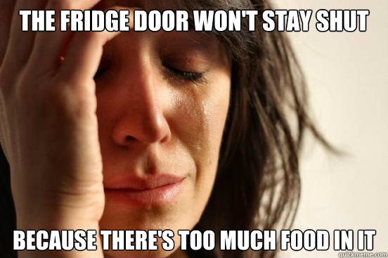 the fridge door won't stay shut because there's too much food in it - the fridge door won't stay shut because there's too much food in it  First World Problems