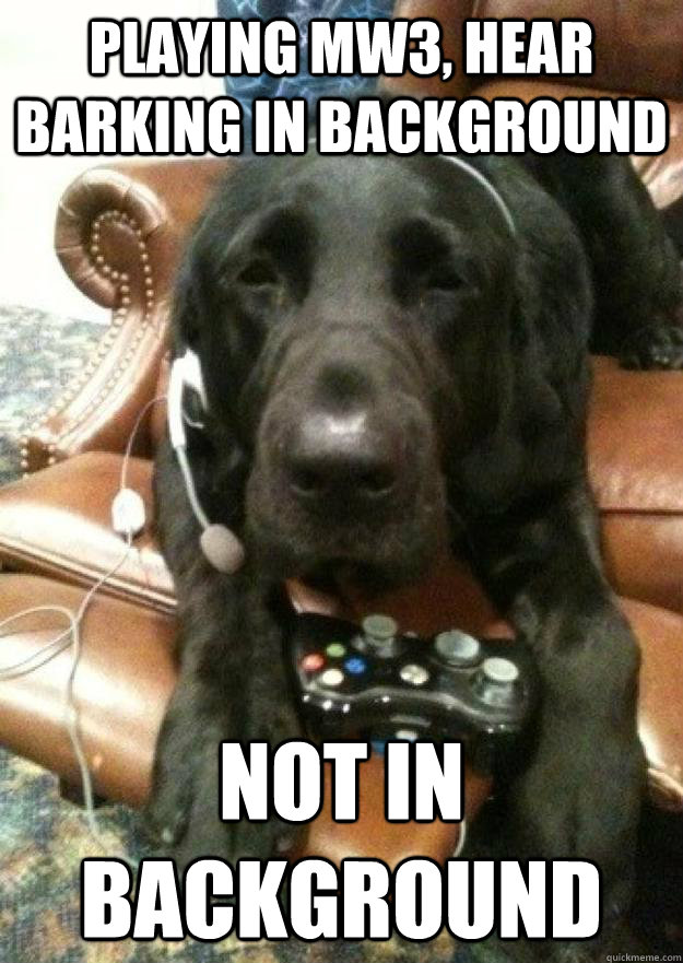 Playing Mw3, hear barking in background Not in background - Playing Mw3, hear barking in background Not in background  Dog playing MW3