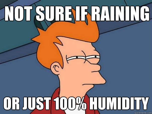 not sure if raining or just 100% humidity - not sure if raining or just 100% humidity  Futurama Fry