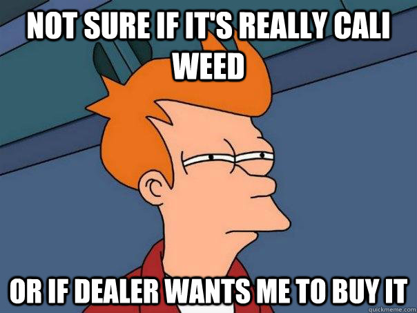 not sure if it's really cali weed or if dealer wants me to buy it - not sure if it's really cali weed or if dealer wants me to buy it  Futurama Fry