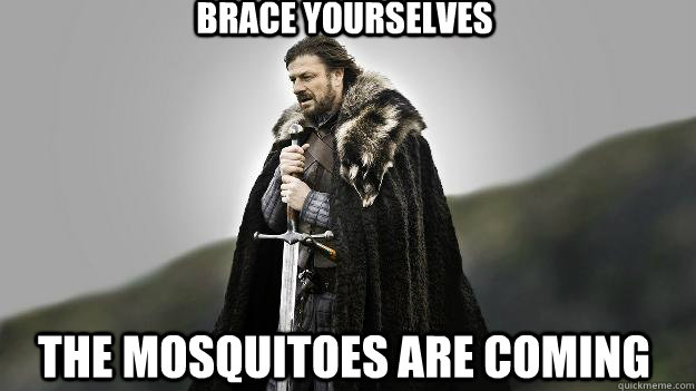 Brace yourselves The mosquitoes are coming - Brace yourselves The mosquitoes are coming  Ned stark winter is coming