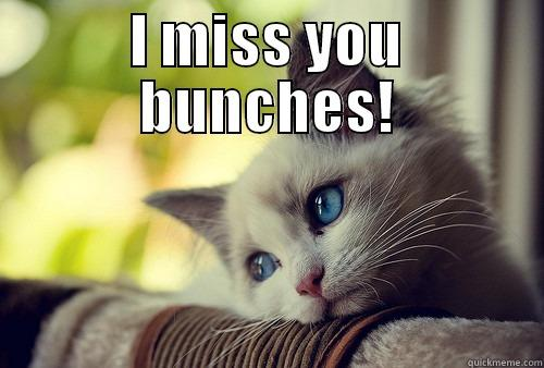 Missing you. - I MISS YOU BUNCHES!  First World Problems Cat