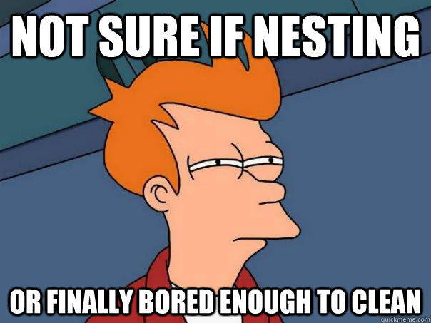 Not sure if nesting or finally bored enough to clean - Not sure if nesting or finally bored enough to clean  FuturamaFry