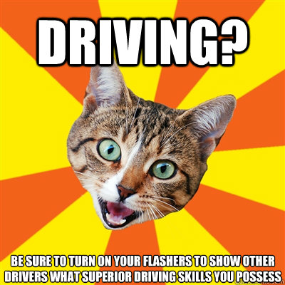 DRIVING? BE SURE TO TURN ON YOUR FLASHERS TO SHOW OTHER DRIVERS WHAT SUPERIOR DRIVING SKILLS YOU POSSESS - DRIVING? BE SURE TO TURN ON YOUR FLASHERS TO SHOW OTHER DRIVERS WHAT SUPERIOR DRIVING SKILLS YOU POSSESS  Bad Advice Cat