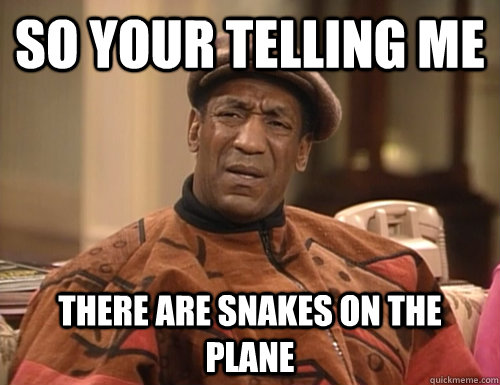 So your telling me there are snakes on the plane
