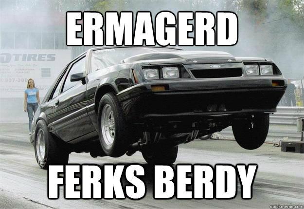 ERMAGERD FERKS BERDY  fox body
