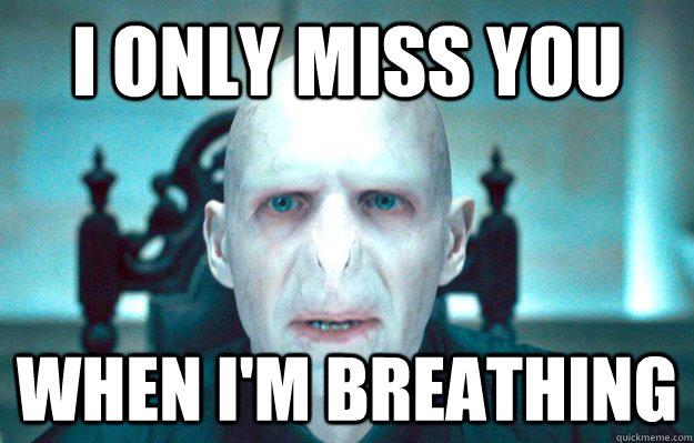 Funniest Miss You Meme : Miss you bear memes