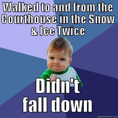 Falling down isn't always funny - WALKED TO AND FROM THE COURTHOUSE IN THE SNOW & ICE TWICE DIDN'T FALL DOWN Success Kid