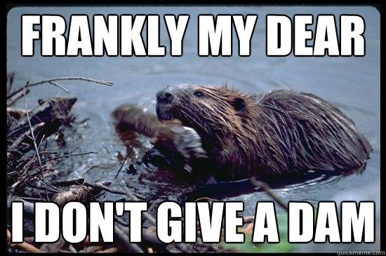 Frankly My Dear I don't give a Dam  Uncaring Beaver