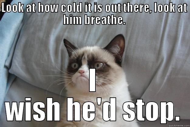 LOOK AT HOW COLD IT IS OUT THERE, LOOK AT HIM BREATHE. I WISH HE'D STOP. Grumpy Cat