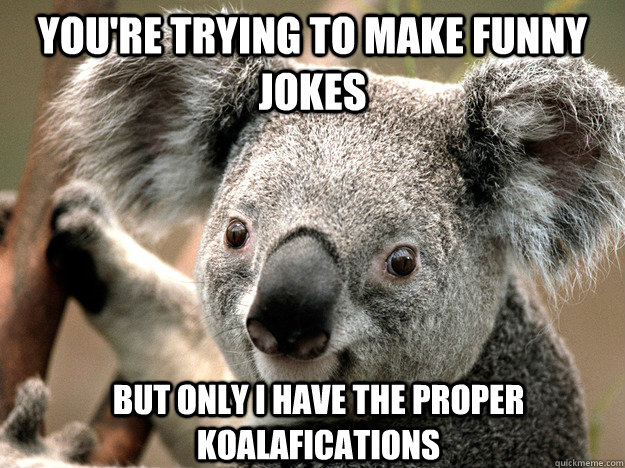 You're trying to make funny jokes But only I have the proper Koalafications - You're trying to make funny jokes But only I have the proper Koalafications  Evil Koala Bear