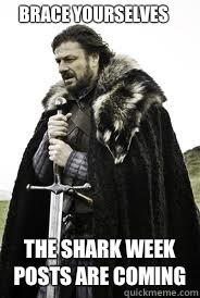 Brace Yourselves The shark week posts are coming - Brace Yourselves The shark week posts are coming  Brace Yourselves