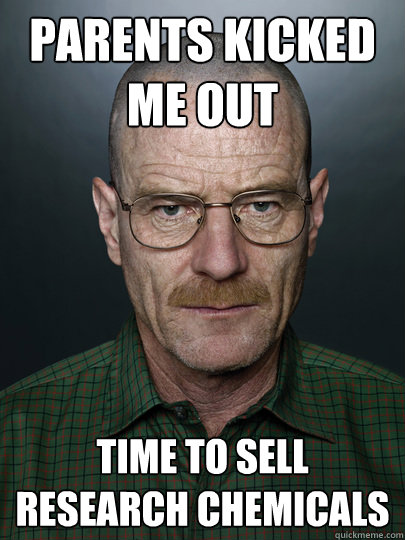 Parents kicked me out TIME TO SELL RESEARCH CHEMICALS   Advice Walter White