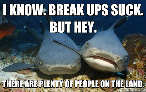 I know. Break ups suck. But hey. There are plenty of people on the land. - I know. Break ups suck. But hey. There are plenty of people on the land.  Compassionate Shark Friend