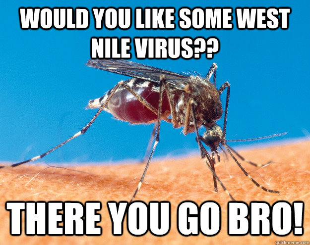 would you like some west nile virus?? there you go bro!