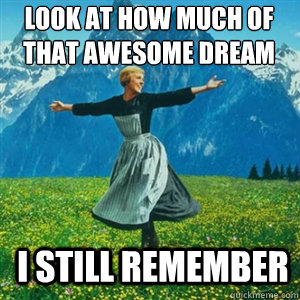 Look at how much of that awesome dream I still remember - Look at how much of that awesome dream I still remember  And look at all the fucks I give